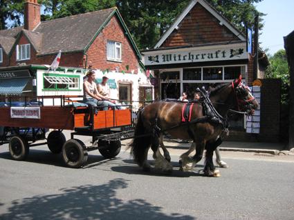 Burley Wagon Ride