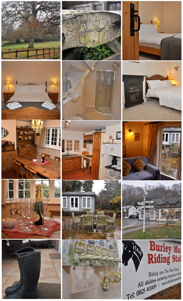 Oakapple Cottage in the New Forest